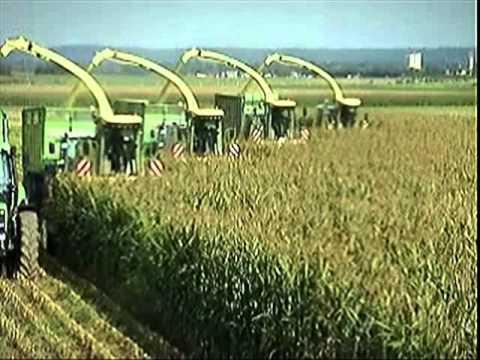 Maize Forage Harvester