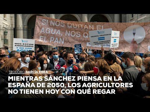 Mientras Sánchez piensa en la España de 2050, los agricultores no tienen hoy con qué regar