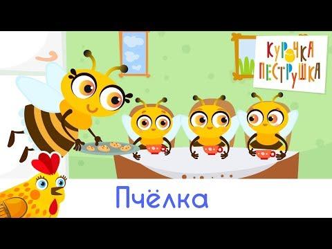 Пчёлка - КУРОЧКА-ПЕСТРУШКА мультики песенки для детей (видео)