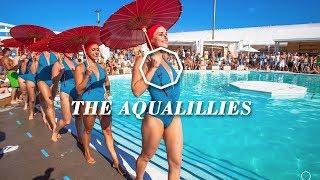 The Aqualillies  Bonus Video