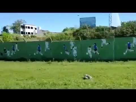 Video. El mural que inauguraron del gol de Diego a los ingleses con relato de Víctor Hugo