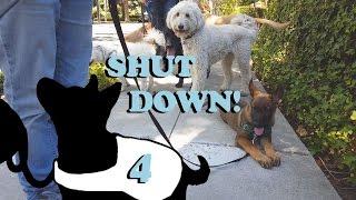 Shut Down 2.0 E4