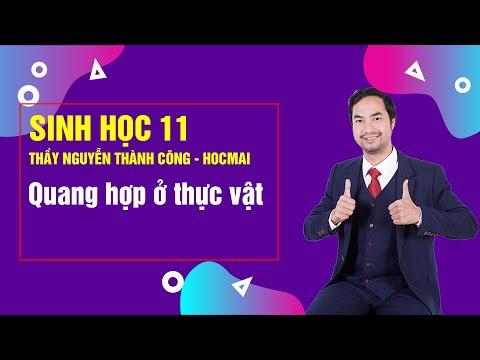 Bài Giảng Quang hợp ở Thực vật - Lớp 11 - Thầy Nguyễn Thành Công - Khóa Học Tốt 11 2020