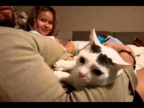 Sascha und die Liebe Katze