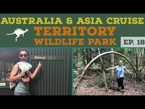Territory Wildlife Park Darwin Australia Fun l Cruise Vlog l Norwegian Jewel l Ep. 18