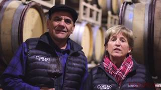 Insight to Coelho Winery
