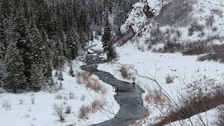 Winter Trout Fishing in Colorado
