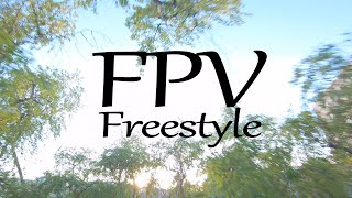 FPV Freestyle between Trees (I was nervous)