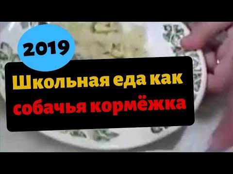 В России школьники сравнили еду из школьной столовой с собачьей кормежкой