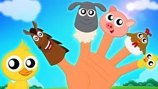 สัตว์ Finger ครอบครัว | เด็กบ๊องสำหรับเด็ก | เพลงเด็ก | Animals Finger Family | Kids Songs