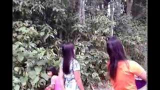 preview picture of video 'ADAT Masyarakat BUGIS ,(kab.BONE)'
