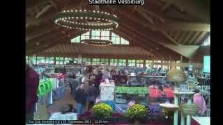 preview picture of video 'Rassekatzenausstellung Cat Club Germany Vilsbiburg'