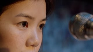 PRISCILLA'S SECRET / OKINAWA: The Secret is Out