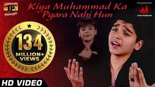 Kiya Muhammad Ka Pyara Nahi Hun, Ali Shanawar & Ali jee 2013 14