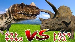 恐竜バトルケラトサウルスvsトリケラトプス|CERATOSAURUSvsTRICERATOPSjurassicworldevolution