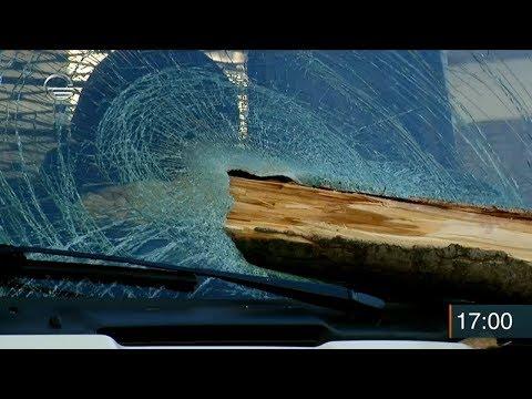 თბილისში, ძლიერი ქარის გამო დიღმის მასივში ხის ტოტი ჩამოვარდა და სატვირთო ავტომობილს დაეცა