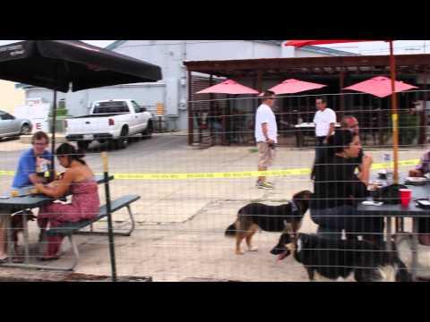 video:Dog Daze at The Hangar