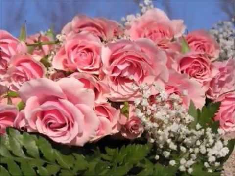 Rosen aus dem Suden (Roses From the South), Op. 388 (Song) by Johann Strauss II