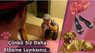Bab-Et Köpeği (Parodi Reklam)