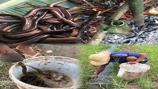 Cùng xem anh chàng người (dân tộc ê đê) câu lươn và làm món lươn nướng ống tre...