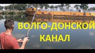 Рыбалка волго донский канал