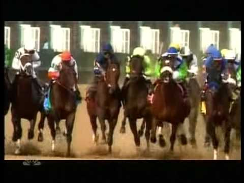•· Free Watch Barbaro - A Nation's Horse