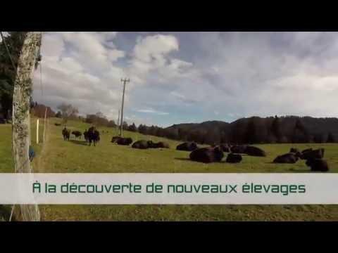 BIO3G (Suisse)