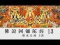 [Mandarin] 佛說阿彌陀經 - 國語普通話 - 第十三講 - 觀成法師主講