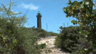 preview picture of video 'Excursion à Petite Terre par Karukera Tours'