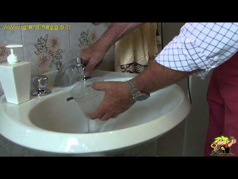 Chi cura malattie di unghie su mani