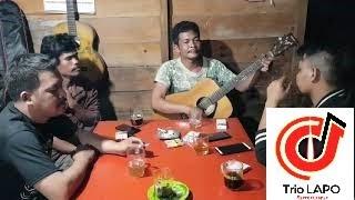 Download lagu Trio Lapo Bunga Nabottar Mp3
