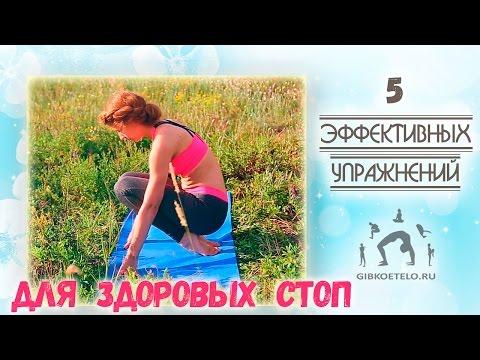 Комплекс упражнений для исправления осанки с гимнастической палкой