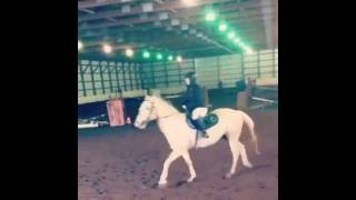 Apache & Ana's First Jumping Course