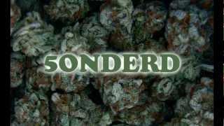 Morsdood - 5ONDERD ft.Vuulle Muulle, Redrum, Rookwalm, Gemeejne Bleejkn, 3de Oge