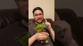 The Biggest Benefit of Parrot Training #shorts