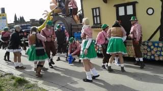 preview picture of video 'Bonzai voor Diepenbeek stoet'