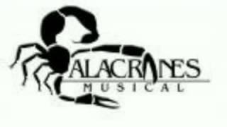 alacranes musical el sinaloense