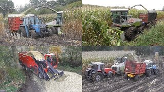 Stuck in the mud! Harvesting maize extreme!
