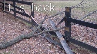 """""""It's Back"""" Creepypasta"""