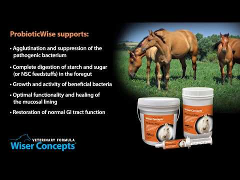 Wiser Concepts ProbioticWise for Horses (9.5 lb) Video