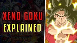 Xeno Goku Explained