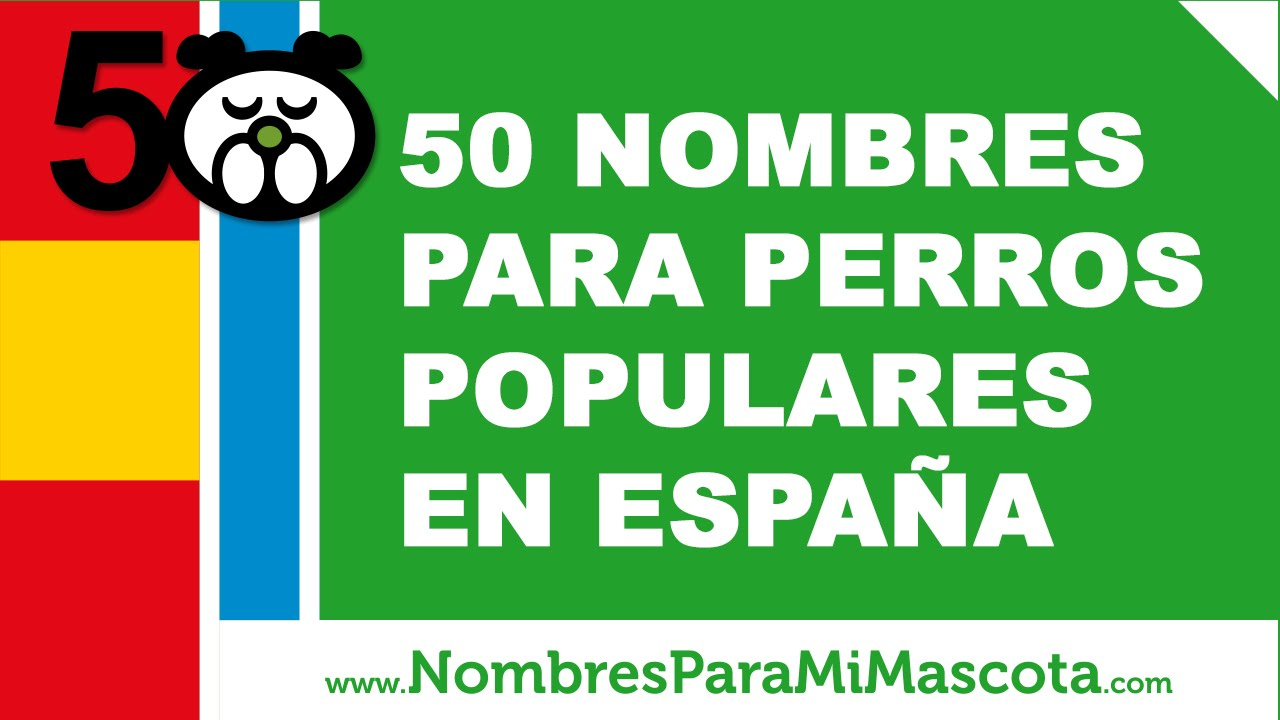 50 nombres para perros populares en España - www.nombresparamimascota.com