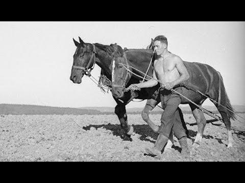 Vidéo de Gustave Roud