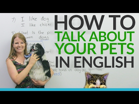 Real English: Talking about pets and animals
