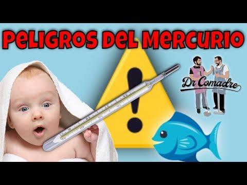 ⚠️¿El mercurio del termómetro🌡 y del pescado 🐟 es peligroso ☠︎?