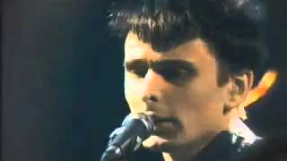 MUSE - Muscle Museum, Nulle Part Ailleurs, 1/5/2000