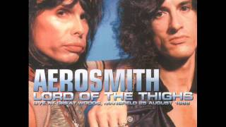 Aerosmith Permanent Vacation 1988