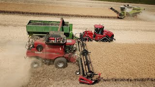 Harvest 2018 - 3x MacDon, Case IH Quadtrac 450, Axial Flow 9120, 9230, Lexion 770, Bergmann GTW 430