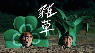 雑草/ヒカキン&セイキン