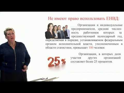 Видеоурок «Исчисление суммы единого налога на вмененный доход (ЕНВД) в торговле»